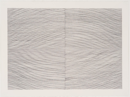 Linda Hutchins. Pool. India ink on paper, 2008. 22-1/2 x 30 in.