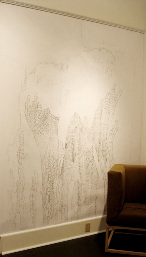 Francesca Lohmann - Wall Rubbing