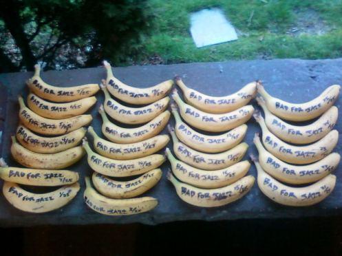 Bad for Jazz bananas